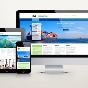 CV International website
